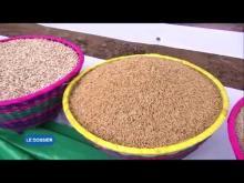 ESPACE UEMOA N° 01 Août 2017 : UEMOA / Agriculture